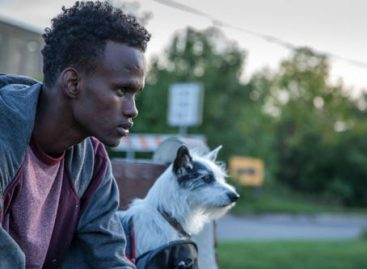 "Movie Review: ""A Stray"" follows a young man in search of meaning and prosperity"