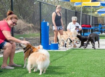Dog Park será inaugurado no Union County Park