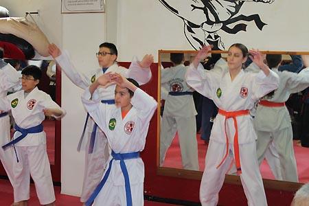 karate graduacao newark 2016 (12)